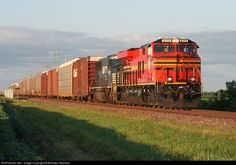 RailPictures.Net Photo: NS 8114 Norfolk Southern GE ES44AC at Tuscola, Illinois by Brandon Warnick