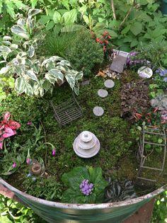 My new fairy garden