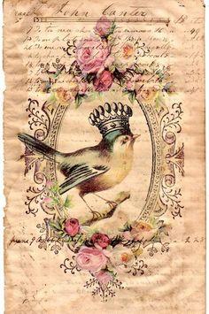 French Postcard <3