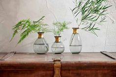 Colored Glass Vases, Spring Plants, Wood Vase, Bottle Vase, Glass Bottle, Hanging Planters, Vases Decor, Hand Blown Glass, Flower Vases