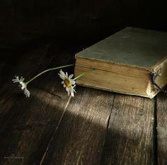 For more book fun, follow us on Pinterest :  www.pinterest.com/booktasticfun AND on Facebook :  www.facebook.com/booktasticfun