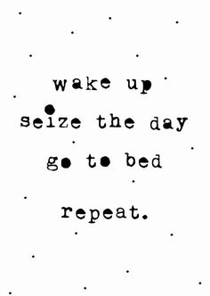 Wake up, seize the day, go back to bed #quote #planfortoday