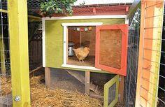 DIY chicken coop plan, an infographic