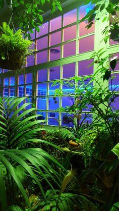 16 Mejores Imagenes De Restaurante El Jardin Del Mesonero