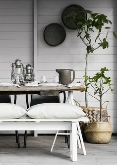 Outdoor dining | outdoor styling | rustic table | bench seating | concrete floors | potted plants | house trees | plants in baskets | design