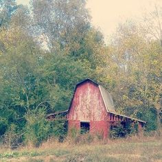 photo by #adcoleman location Athens Tn #barn #barnart #countryliving #farmliving #farmland #countryside #countrystyle