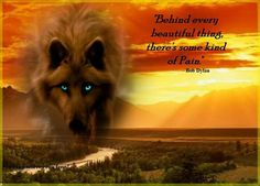 still for 5 months. Wolf Qoutes, Lone Wolf Quotes, Wolf Spirit, My Spirit Animal, Native American Quotes, Wolf Pictures, Warrior Quotes, Beautiful Wolves, Badass Quotes