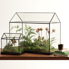 Cheap glass green house, Buy Directly from China Suppliers:Cool Mini Handmade Tabletop Glass Green Houses,Small Arched Greenhouse Wardian Case Miniature Landscape Garden Terrarium Indoor Greenhouse, Small Greenhouse, Greenhouse Ideas, Greenhouse Gardening, Miniature Greenhouse, Indoor Gardening, Vegetable Gardening, Container Gardening, Pallet Greenhouse