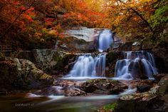 Autumn falls by Jaewoon u on 500px