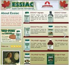 Drinking Essiac Tea: Four wise health benefits considered Essiac Tea Benefits, Health Benefits, Health And Wellness, Health Fitness, Science, Immune System, Clinic, Herbalism