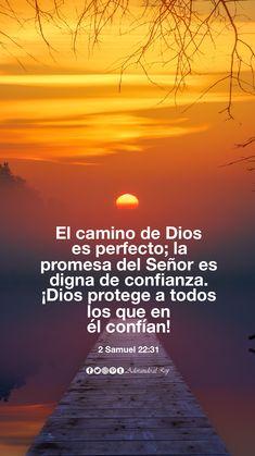 El camino de Dios es perfecto; la promesa del Señor es digna de confianza. ¡Dios protege a todos los que en él confían! (2 Samuel 22:31) #CitasBiblicas #AdorandoalRey