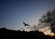 Istanbul People & Lights - [2013 N. 3]