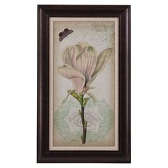 Cartouche & Floral I Framed Print at Joss & Main