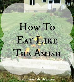 Here are a few suggestions to help you make Plain food choices—the bonus is, they're good for your health and good for the Earth, too! Amish Homes. Frugal Living Tips, Frugal Tips, Amish Recipes, Cooking Recipes, Dutch Recipes, Diet Recipes, Amish Pie, Amish Culture, Amish Country