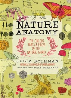 Nature Anatomy by Julia Rothman has the most stunning artworks of everything from sunset and clouds to feathers and jellyfish. Over 700 illustrations filled with interesting facts makes this book t...