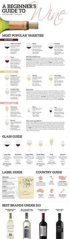 All you need to know about wines for beginners.A Beginner's Guide to Wine - Andrea Raby The Big Green Guide Vin, Wine Guide, Wine Tasting Party, Wine Parties, Wein Poster, Wine Infographic, Wine Education, Wine Cheese, In Vino Veritas