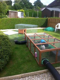 My mobs new garden set up! I moved house last week & this is what my 2 bunny rabbits & piggy live in now, they are a v happy bunch! 8ft runaround tube goes from their hut into a 6ft run which then attaches via another tube to some runaround pens! They are out all day sunning themselves then all night binkying & playing Louise x