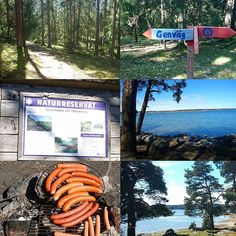 Today we had a wellness day at my work. Me and my colleagues went hiking in the woods and had a lovely lunch break by the sea.  #hiking #woods #naturereserve #bbq #sausage #friskvårdsdag #friskvård #naturreservat #skog #korv #grillning #lchf #lowcarb #lowcarbhighfat #lågkolhydratkost #lavkarbo #keto #paleo by sotutansocker