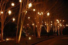 botan garden, holiday imag, canal garden, public garden, botanical gardens