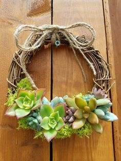 Isn't this cute?  A 6 inch grapevine wreath with succulents.   I like it!!