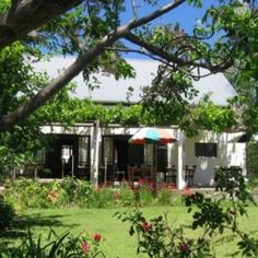 Lunch at Marianas Saturday Morning, Sunday, Cool Countries, House Front, Vegetable Garden, South Africa, Gazebo, Herbs, Outdoor Structures