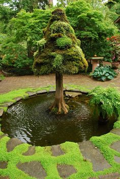 An Amazing #pond Idea For Your Home #garden This Is So Cool! Part 52