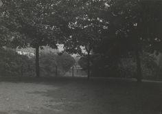 Aborreparken. Kreditering: Københavns Museum   Set mod Rådhuspladsen fra højen.   [Foto og tekst stammer fra Niels Ludvig Mariboes billedsamling. Denne samling blev til i perioden 1880-1919, men rummer også nogle af de ældste fotografier af København. Samlingen tilhører nu Københavns Museum.]  Uploadet den 20.10.2009 af Københavns Museum        Indre By / Pisserenden, (1910 - 1920), natur