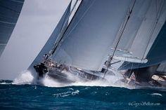 Tight in the pack! #StBarthsBucket #regatta #superyacht Photography Cory Silken