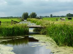 Polder in the Netherlands The Beautiful Country, Beautiful World, Beautiful Places, National Geographic, Famous Places, Landscape Pictures, Amazing Nature, Nature Photos, Champs