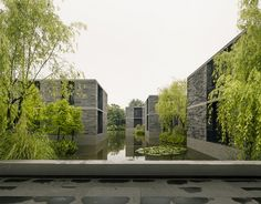 Apartment buildings surrounded by a water garden and wild landscape