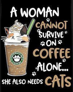 Crazy Cat Lady, Crazy Cats, Cute Cats, Funny Cats, Cat Reading, Black Cat Art, Cat Cafe, Cat Room, All About Cats