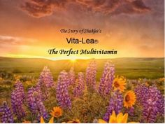 The Story of Shaklee's Vita-Lea by Cindy McAsey via slideshare