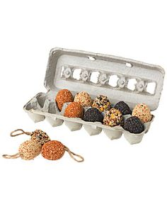 I might try to make these myself.  Directions here:  http://www.ehow.com/how_6082079_make-bird-seed-eggs.html