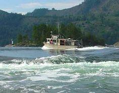 Sunshine Coast Tours - Sunshine Coast BC Canada Sunshine Coast Bc, Boat Tours, West Coast, Canada, Travel, Beautiful, Viajes, Destinations, Traveling