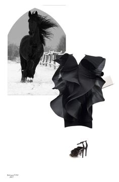 """Horses Series 3/5- Running #1"" by babygurl7191 ❤ liked on Polyvore featuring DKNY, Pierre Cardin and Topshop"