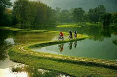 Bicycle Trail in the suburbs of Rio de Janeiro, Brazil. Lake Garden, Taiping, Photo Print, Pedestrian Bridge, World Of Sports, Science And Nature, Beautiful Landscapes, Brazil, High Road