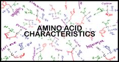 Understanding Amino Acid Side Chain Characteristics for the MCAT
