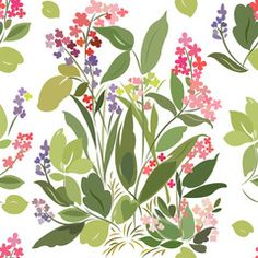 Seamless pattern with bush, garden, meadow flowers on a white background, canna flowers