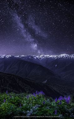 Milky Way & Hurricane Ridge, Olympic National Forest - Washington State