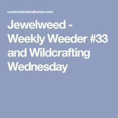 Jewelweed - Weekly Weeder #33 and Wildcrafting Wednesday