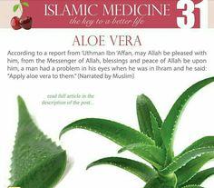 Islam Hadith, Islam Muslim, Islam Quran, Allah Islam, Alhamdulillah, Islamic Teachings, Islamic Quotes, Islamic Msg, Islam And Science