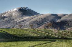 🇮🇹primi paesaggi dal sapore primaverile🇨🇰first landscapes from spring flavor• • • • • • #landscape #spring #mountain #sky #trees #nature #loves_nature #loves_united_umbria #italiastyle_umbria #igers #igersitalia #igersumbria #loves_umbria_ #yallersumbria #amazing_fs #everything_imaginable_ #jaw_dropping_shotz #italia_super_pics #bestumbriapics #ig_shotz #vivoumbria #umbriaunafotoalgiorno #umbria_super_pics #umbriagram #paesaggio #naturelovers #top_italia_photo #igpic_umbria…