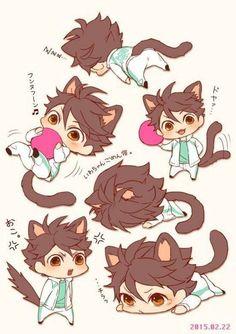 Neko chibi ver so cute s Oikawa Tooru, Iwaoi, Kagehina, Daisuga, Cute Anime Chibi, Kawaii Chibi, Anime Kawaii, Haikyuu Funny, Haikyuu Fanart