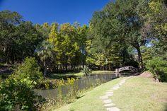 paths lead you to a Buddhist temple. Jungle Gardens, Avery Island, near New Iberia, Louisiana