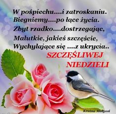 Good Morning, Facebook, Polish Sayings, Good Morning Funny, Studying, Quotes, Photo Illustration, Buen Dia, Bonjour