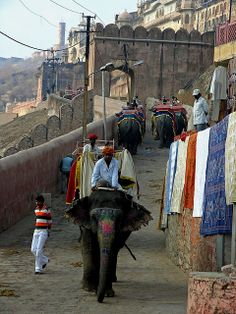 Elephant trip to Amber, Mughal Fort Palace, rises from a rocky muntainside near Jaipur, Rajasthan, India