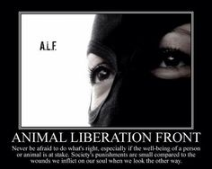 ALF UNTIL EVERY CAGE Is EMPTY