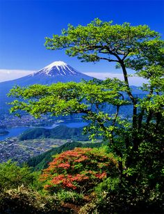 Mt. Fuji, Japan.. When will I see you again?..