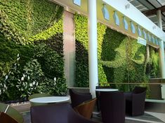 This is the kind of green wall I'd love to see in offices and public places! Found in Edmonton Airport.