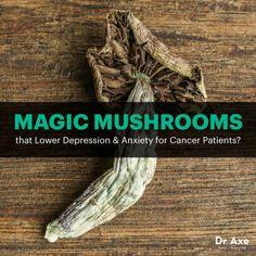Magic mushrooms - Dr. Axe